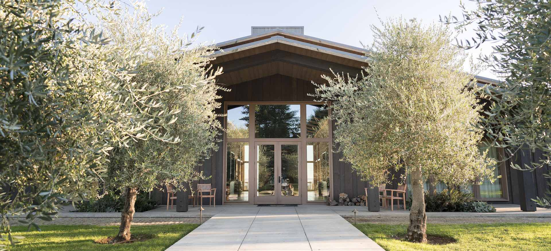 Experience the Beauty of the Willamette Valley