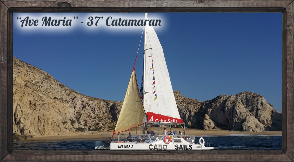 ave-maria-catamaran-slider